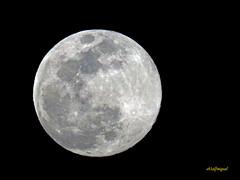 LA LUNA HOY 20-03 -2019 (1) (eb3alfmiguel) Tags: astronomía luna llena