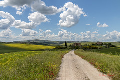 JH - IMG_1819 A (visionspartageesjh) Tags: toscane tuscany paysage chemin route val dorcia nuages cyprès cipressi champ ciel italie landscape cloud sky flowers path coquelicots poppy paesaggio sentiero strada nuvola cielo papavero