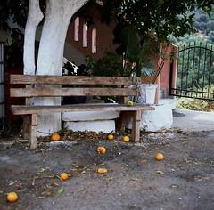 (samorodovs) Tags: 6x6 греция hasselblad крит 120mm crete portra kodak portra160 160nc film