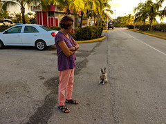 Sleepy little dog comes to meet us. (lezumbalaberenjena) Tags: santa clara cuba 2019 lezumbalaberenjena airport aeropuerto abel santamaría villas villa