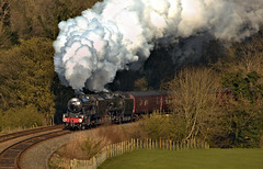 Morning Departure (Ian Hardman Photography) Tags: steam tour railway locomotive train west coast touring company 8f merchant navy 35018 48151 wcrc rytc wennington