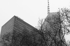 Bank of America Tower and 1095 Avenue of the Americas (Zach K) Tags: architecture cookfox kahnandjacobs kahnjacobs kahn jacobs bryant park trees outline high rise skyscraper buildings design urbanism nyc midtown glass facade curtainwall fujifilm fuji xt2 xf56mm12 56mm12 angles blackandwhite black white manhattan