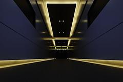 sdqH_190206_B (clavius_tma-1) Tags: sd quattro h sdqh sigma 1224mm f4 dg hsm art 新宿 shinjuku 東京 tokyo 地下道 underpass