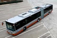 9201-© STIB/MIVB (VDKphotos) Tags: stib mivb iveco urbanway18 hybrid autobus articulé livrée06 belgium bruxelles