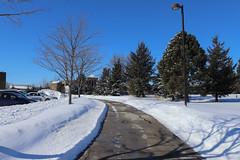 Snow Photos-10