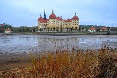 Germany - Schloss Moritzburg (andrei.leontev) Tags: deutschland germany allemagne schloss moritzburg castle chateau château saxony