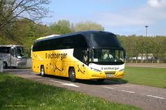 BDB0155 PA-AN 11 Eichberger (Fransang) Tags: paan11 eichberger neoplan cityliner n1216