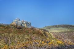St Abbs Head (Michelle O'Connell Photography) Tags: scotland coast stabbshead stabbs berwickshire eastcoast michelleoconnellphotography