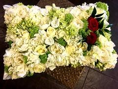 A stunning massed cushion of hydrangeas, peonies, viburnam, and roses.  . . #parsleyandsageflorist #stokeontrentflorist #hydrangea #hydrangealove #peonies #rose🌹 #rose #flowers #flowerstagram #flower_daily #floristshop #florals #flowergram #flowerdes (parsleyandsage11) Tags: peonies flowers flowerstagram flowerdaily floristshop florals flowergram flowerdesign hydrangea flowerbeauties flowerssuperpics parsleyandsageflorist hydrangealove rose flowerperfection stokeontrentflorist