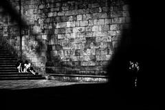 Escola da Tebra #11 (Noel F.) Tags: fuji xe3 x voigtlander 90 apo lanthar street photography galiza galicia santiago compostela