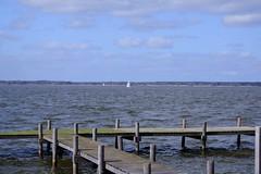 Steinhuder Meer (baseman88) Tags: steinhude steinhuder meer segelboot niedersachsen lower saxony deutschland germany