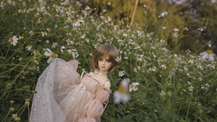 you carry so much love in your heat. Give some to yourself (Sugar Lokifer) Tags: oasisdoll bjd ball jointed doll resin sqlab hybrid