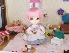 The Fallen Star Finds Hope #5 (Arthoniel) Tags: feign reign shire pets animals cat dog liccachan latidoll suji ns normalskin basic faceup haru tan owl ooak roombox gakman creations artdoll dollhouse collection tiny miniature rement bid balljointeddoll latiyellow house figure vet