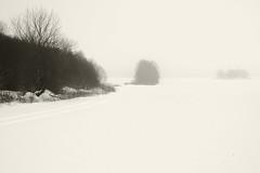 Udune maastik (Jaan Keinaste) Tags: pentax k3 pentaxk3 eesti estonia loodus nature lumi snow udu fog talv winter maastik landscape
