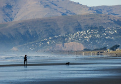 Compressed Perspective (Steve Taylor (Photography)) Tags: running dog pier hill redcliffs black blue brown green woman lady newzealand nz southisland canterbury christchurch newbrighton beach dunes ocean pacific sea seaside surf waves grass autumn porthills