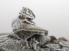 Ben Ledi ice crystals (Niall Corbet) Tags: scotland benledi stirlingshire nationalpark lochlomondtrossachs rock ice stone boulder winter mountain