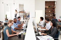 A productive workplace (michaelgiuffrida1) Tags: 20s 30s adults business busy career coworkers colleagues communication concentrating connection copyspace creative day desk horizontal inarow incidentalpeople indoors job lookingatscreen mediumgroupofpeople men millennials multiethnicgroup office officefurniture openplan professional sideview sitting smartcasualclothing stairs sunlight teamwork technology usingcomputer waistup walking window women work workplace youngadults michael giuffrida