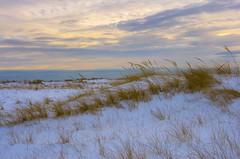 Winter in the Dunes (Bud in Wells, Maine) Tags: wellsbeach afternoon winter dunes dunegrass snow coastal coast vacationland maine