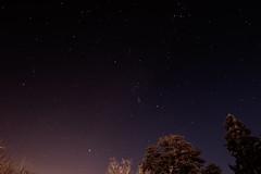 La tête dans les étoiles (mick42m) Tags: étoiles étoile sky nuit longexposure star night tree canon tokina 1116 tokina1116 77d