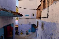 Chefchaouen, Morocco, January 2019 D810 614 (tango-) Tags: chefchaouen bluecity villaggioblu bluevillage morocco maroc 摩洛哥 marruecos марокко المغرب