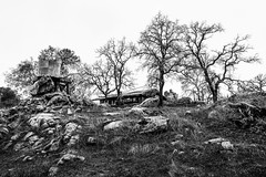 Catheys Valley, California (paccode) Tags: solemn d850 landscape bushes brush serious quiet california lonely abandoned hills tree shack farm house home forgotten scary monochrome blackwhite creepy field catheysvalley unitedstatesofamerica us