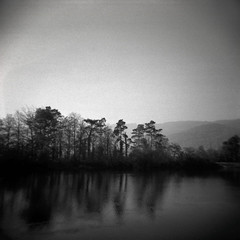 untitled. (rorofot) Tags: filmnegative epsonv550 scans holga 120mm analog ilfordhp5 switzerland aare landscape river