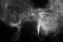 Smoke Phoenix (KellarW) Tags: absract pareidolia rising smoke ashes bird phoenix mystery light