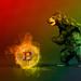 Black bear with hot Bitcoin