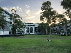 IMG_2276 (dudegeoff) Tags: 20190212syddarlingislandwalk february 2019 sydney nsw australia walks