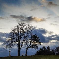 Dramatic autumn sky ☀️🍂 (Martin Bärtges) Tags: landscapephotography landschaftsfotografie naturephotography naturfotografie natur nature baum tree sun sunshine sonnenstrahlen sonnenschein sonne raysoflight wolken clouds blau himmel blue sky autumncolors autumn herbstfarben herbst outdoor outside drausen nikonphotography nikonfotografie d7000 nikon landschaft landscapelovers landscape