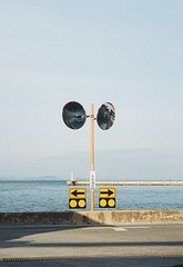 penFT (haco-otoko) Tags: analog filmisnotdead フィルム film olympus halfcamera penft