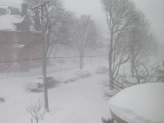 Blizzard, Buffalo NY - Jan 2019 (ianulimac) Tags: snow buffalo ny erie lakeerie city westernnewyork blizzard weather cold winter cars covered piles plows emergency artic polarvortex sustainedwind storm lakeeffectsnow snowbands snowflake lakeeffect trees ice hazard windchill bitter biting frostbite negative temperature freezing frozen snowplow