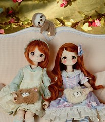 We have twins in the family ! (Real Salica) Tags: dollfiedream minidollfiedream twins red ginger hair wig volks dollce head sloth kawaii dollfie 45cm 14scale vinyl mdd
