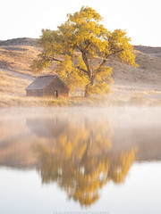 Morning Reflections (Erik Johnson Photography) Tags: red nebraska sandhills abandoned barn tree golden goldenhour fall autumn colors reflection water lake leaves midwest great plains