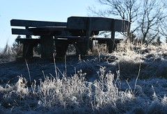 On top of the hill (Gerlinde Hofmann) Tags: germany thuringia village bürden hoarfrost grass bench