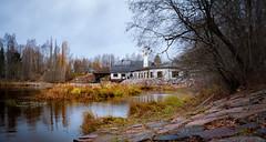 Vantaankoski, Vantaa, Finland (Mikael Neiberg) Tags: oldbuilding river water landscape autumn syksy fall grass rocks vanhaviilatehdas kuninkaanlohet oldfactory