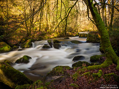la Rivière d'Argent en aval du gouffre (Paul Kerrien) Tags: finistere poselongue bretagne campagne rivière bzh