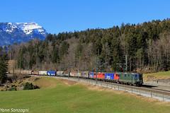 Une des dernières (Lion de Belfort) Tags: train chemin de fer cff ffs sbb re 44 66 cargo 420 330 3303 620 alpes suisse goldau montagne neige gotthard gothard schwytz arth