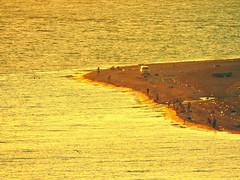 Купаясь в закате / Bathing in sunset (Владимир-61) Tags: абхазия пицунда осень сентябрь море берег закат abkhazia pitsunda autumn september sea shore sunset nikon coolpix p600