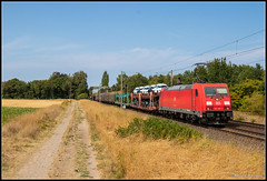 DB Cargo 185 220+UC, Peine (D), 1-8-2018 (Allard Bezoen) Tags: trein train zug lok elok lokomotieve locomotive locomotief 185 traxx ac2 bombardier db deutsche bahn cargo 220 uc unit verkehrsrot peine