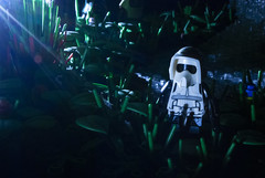 Midnight Scouting on Endor (Ben Cossy) Tags: lego moc endor scout empire imperial ewok star wars afol tfol