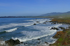 Coast Area (ivlys) Tags: usa california routenr1 sansimeon küstenlandschaft coastarea pacific landschaft landscape kalifornischermohn californiapoppy eschscholziacalifornica blume flower blüte blossom natur nature ivlys