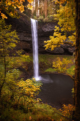 Fall Foliage Falls (kephart_kyle) Tags: 2017 fall foliage forest landscape north northwest oregon pacific pnw silverfalls silverton south waterfall winter