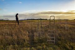 The Watcher (nicolamarongiu) Tags: scala surrealism surrealismo landscape paesaggio man uomo erba cielo sky humor abstract conceptual sunset ironic solitary