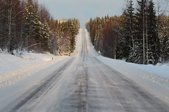 """""""The coyntry highway"""". (irio.jyske) Tags: landscapephotograph landscape lanscape landscapepic landscapes landscapephotographer landscapephotos lakescape landscapepics naturephotograph naturepictures naturephoto naturepic nature naturephotos naturephotographer naturepics naturescape natural photographer photograph photos pic photo beauty beautiful road highway wilderness forest hill trees colors sunny frost cold"""