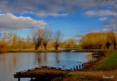 Étang de pêche (DOMVILL) Tags: norddefrance domvill passerelle ponton pêche wwwflickrcompeoplevildom étang