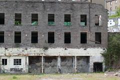 Wallace Craigie Works Dundee 2016 (22) (Royan@Flickr) Tags: 201605 wallace craigie works dundee william halley sons blackcroft landmark jute mill factory buildind demolished history 2016