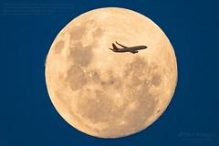 Virgin Australia Boeing 737-8FE. Reg.VH-YIT 'Lammermoor Beach' crosses the Waxing Gibbous Moon 98.8%. (ePixel Aerospace) Tags: virginaustralia boeing boeing737 boeing7378fe vhyit lammermoorbeach moon lunar waxinggibbousmoon aircraft travel brisbane flight va159