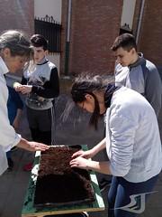 Huerto-Escolar-Asociacion-San-Jose-Guadix-20190314-0004 (Asociación San José - Guadix) Tags: huerto escolar asociación san josé centro educación especial ntra sra de la esperanza 2019 marzo