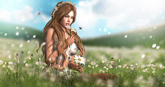 A million thoughts (meriluu17) Tags: moonamore monso theskinnery lepoppycock field daisy daisies flower bee thoughts summer sunny people portrait girl flora